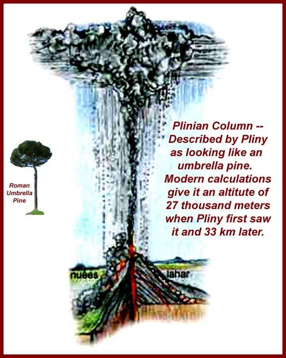 http://www.mmdtkw.org/ALRIVes01IntroPlinianColumn.jpg