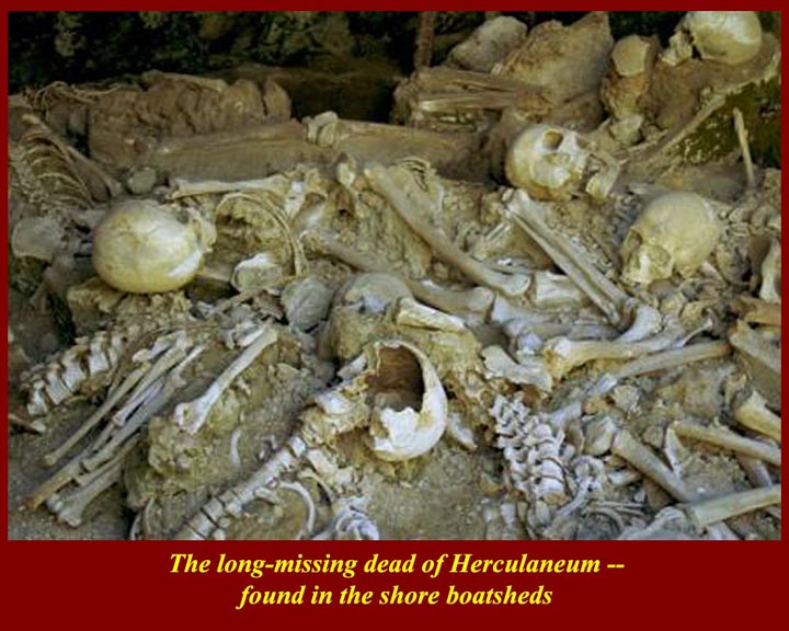 http://www.mmdtkw.org/ALRIVes0408Skeletons.jpg