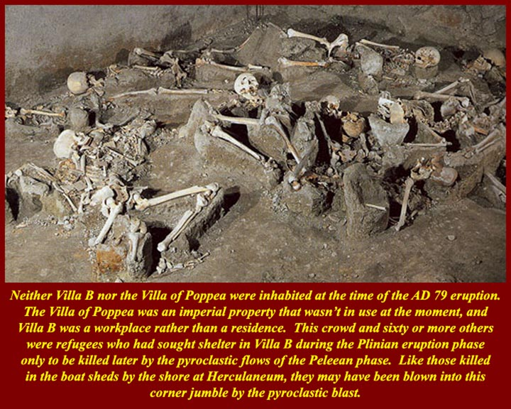 http://www.mmdtkw.org/ALRIVes0621LCrassius3Skeletons.jpg