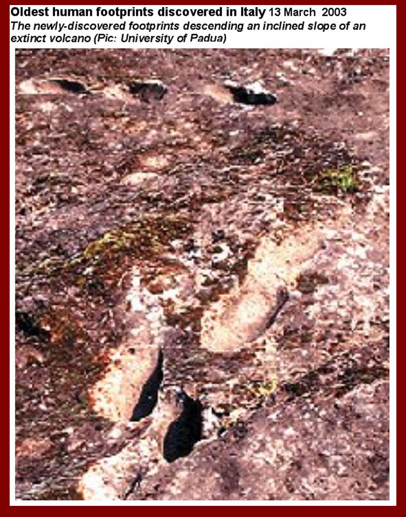 http://www.mmdtkw.org/AU0201aOldestFootprints.jpg