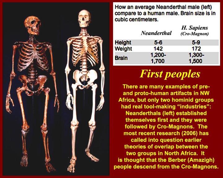 http://www.mmdtkw.org/CNAf0122SkeletalComparison.jpg