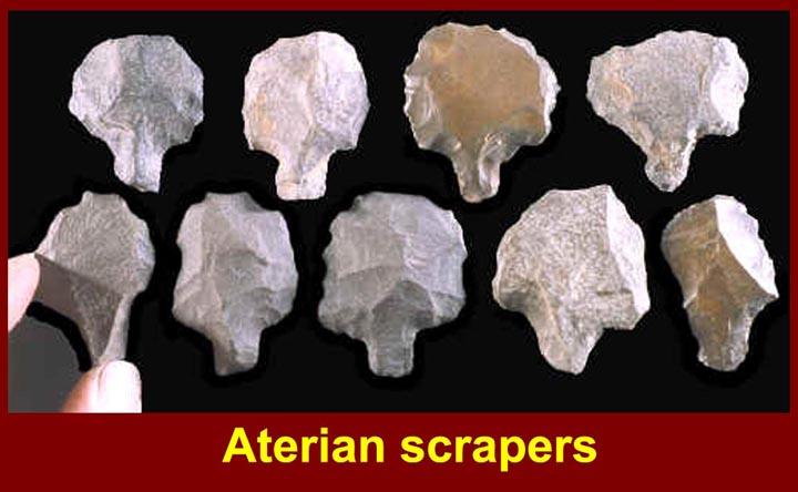 http://www.mmdtkw.org/CNAf0130AterianptsScraperssm.jpg