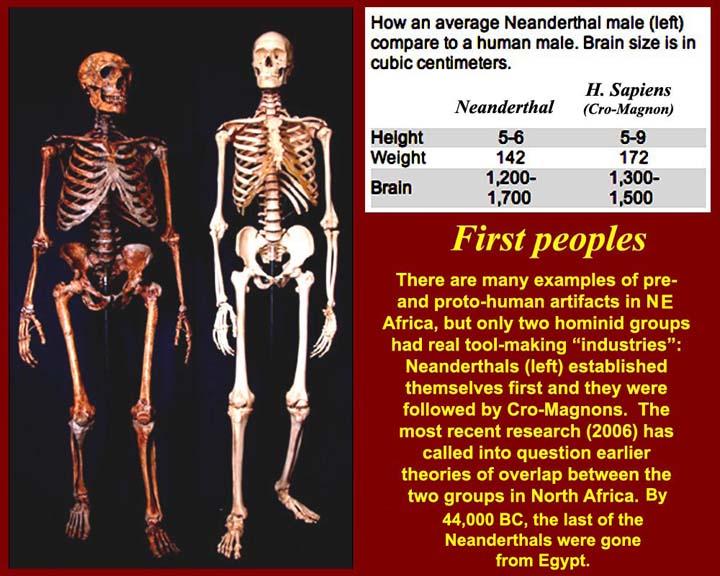 http://www.mmdtkw.org/EGtkw0131SkeletalComparison.jpg
