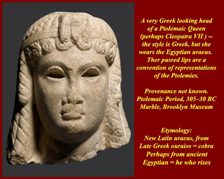 a biography of celopatra vi the last pharaoh of egypt Xem video  the last ruler of the macedonian dynasty,  cleopatra vii biography  hatshepsut was the longest reigning female pharaoh in egypt,.