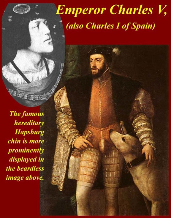 charles v holy roman emperor essay He gave his brother ferdinand (left of the throne) the holy roman empire, while  his son phillip (at the right) became king of spain and lord of the netherlands.
